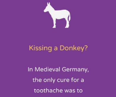 Kissing a donkey