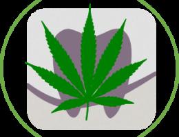 Cannabis and Oral Health Icon